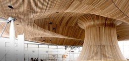 Suspended Timber Ceiling