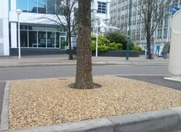 DekorGrip – Resin Bound Tree Pit System