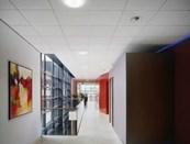 Ultima+ OP Tegular - Ceiling tile system