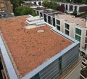 PermaQuik Pre-Grown Green Roof System - Quantum (Hybrid)