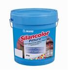 Silancolor Paint