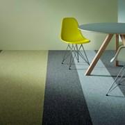 Tessera Teviot Carpet Tile