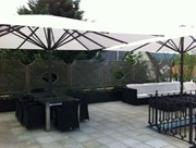 Richmond Umbrella - Square