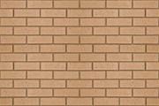 Argyll Buff Wirecut - Clay bricks