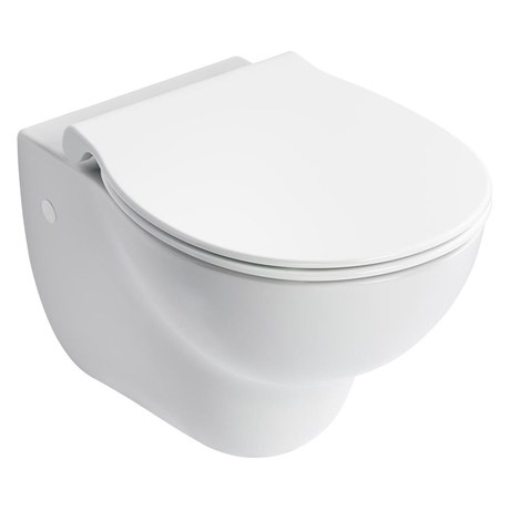 Contour 21+ Wall Mounted Rimless WC Suite