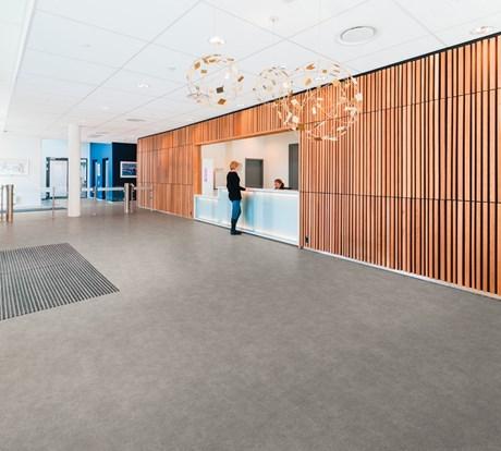 Polysafe Arena PURSafety Flooring