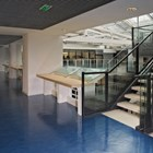 Marmoleum Decibel Sheet Flooring