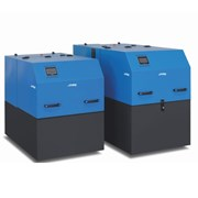 Indop20-Packaged combined heat and power (CHP) units