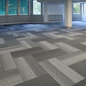 Grade Planks - Carpet Plank