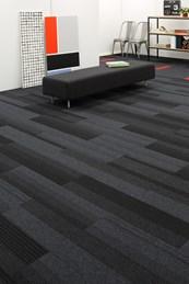 Balance Echo Planks- Carpet Plank