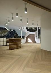 Expona Bevel LineVinyl Tiles