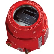 Intelligent Flameproof IR3 Flame Detector
