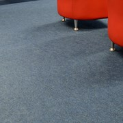 4400 Broadway - Carpet