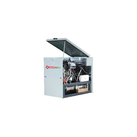 Energimizer7.5 NG -Packaged combined heat and power (CHP) units