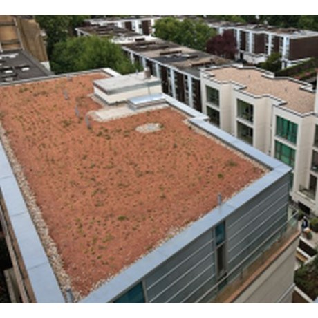 PermaQuik Brown Biodiverse Green Roof System - Quantum (Hybrid)