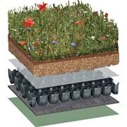 Bauder Biodiverse Roof System
