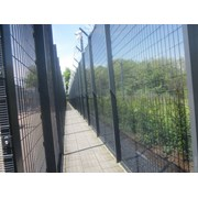 Securifor 2D + Bolt Spider Fixators - Metal mesh fence panel