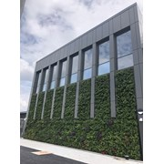 Biotecture- Living Wall System - Hydroponic System