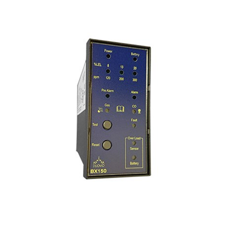 BX150 – 1 Channel Panel Mounted Gas Detector