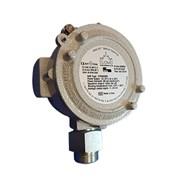 SG895 – ATEX Gas Sensor