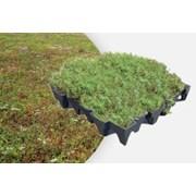 ANS GrufeKit Green Roof System - Sedum