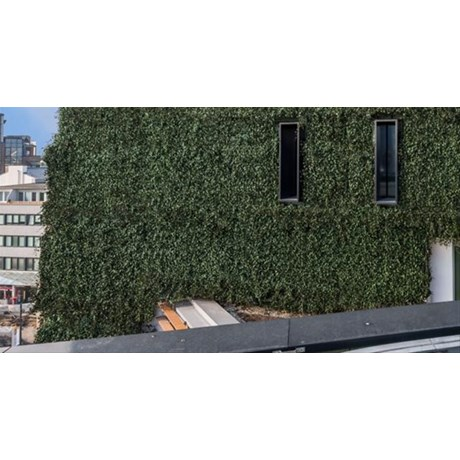 WallPlanter®