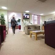 Genus & Volnay - Broadloom & PVC Impervious Carpet Sheet