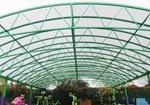 Hamilton Free Standing Canopy
