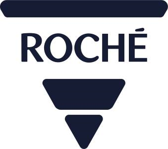 Roché Systems Ltd Logo