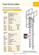 Fixed Vertical ladder with Safety Cage and Guardrail