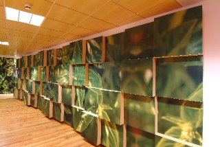 Armstrong Madera Wood Acoustic Ceiling Tiles