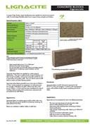 Lignacrete Concrete Block