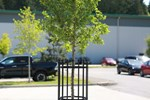 Vertical Tree Guards
